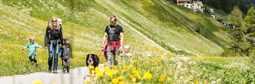 Hiking with dog in Samnaun Switzerland
